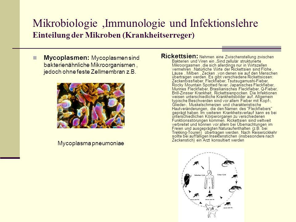 Mikrobiologie,Immunologie und Infektionslehre Einteilung der Mikroben (Krankheitserreger) Mycoplasmen: Mycoplasmen sind bakterienähnliche Mikroorganismen, jedoch ohne feste Zellmembran z.B.