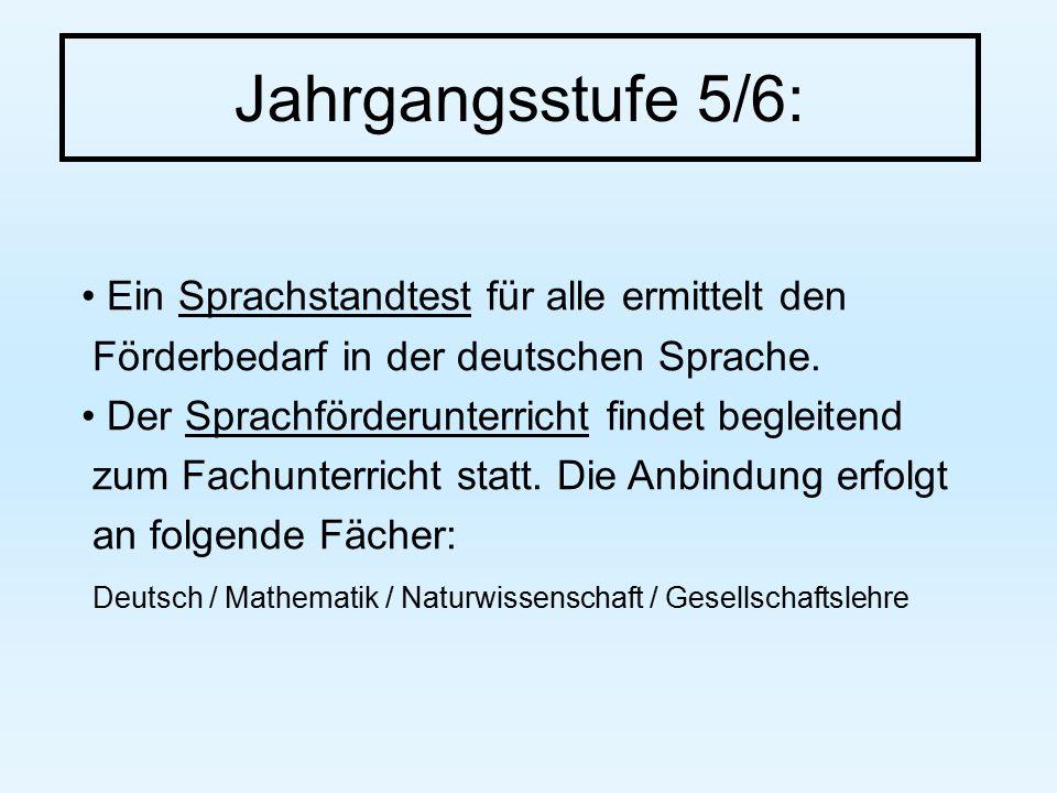 Jahrgangsstufe 5/6: Ein Sprachstandtest für alle ermittelt den Förderbedarf in der deutschen Sprache.