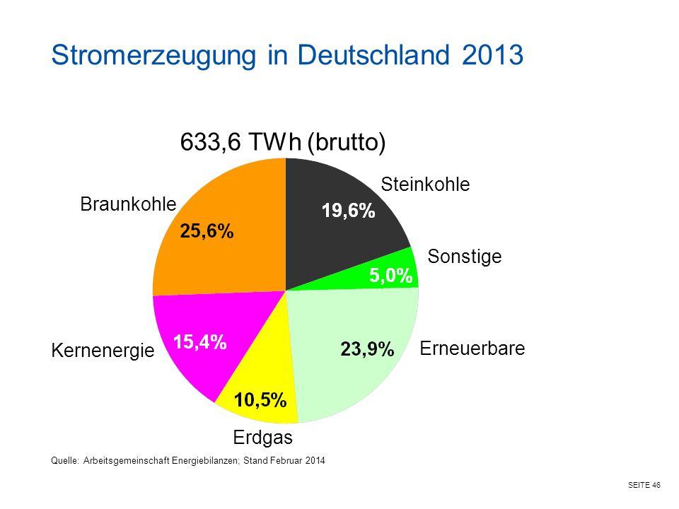SEITE 46 633,6 TWh (brutto) Braunkohle Kernenergie Erdgas Erneuerbare Sonstige Steinkohle Stromerzeugung in Deutschland 2013 Quelle: Arbeitsgemeinschaft Energiebilanzen; Stand Februar 2014