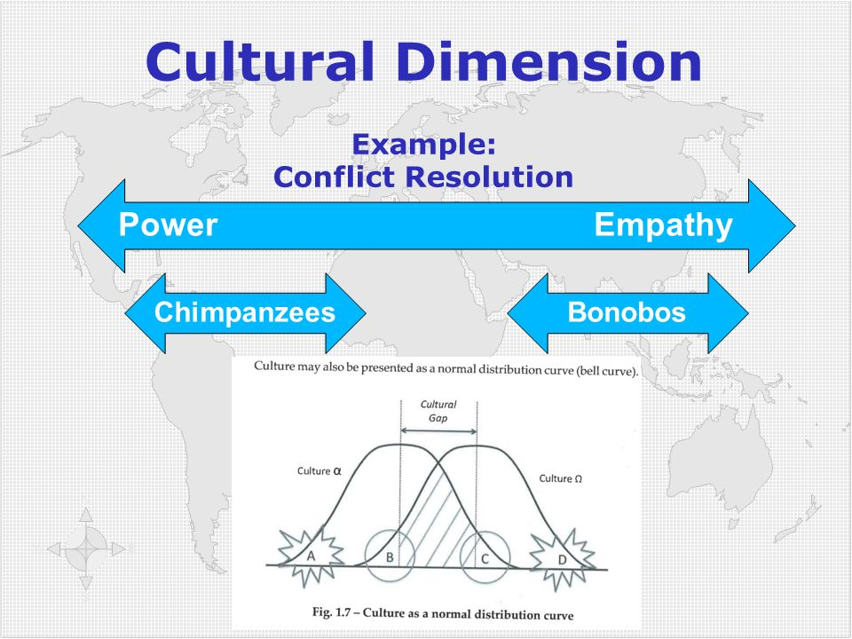 Cultural Dimension Example: Conflict Resolution Power Empathy ChimpanzeesBonobos