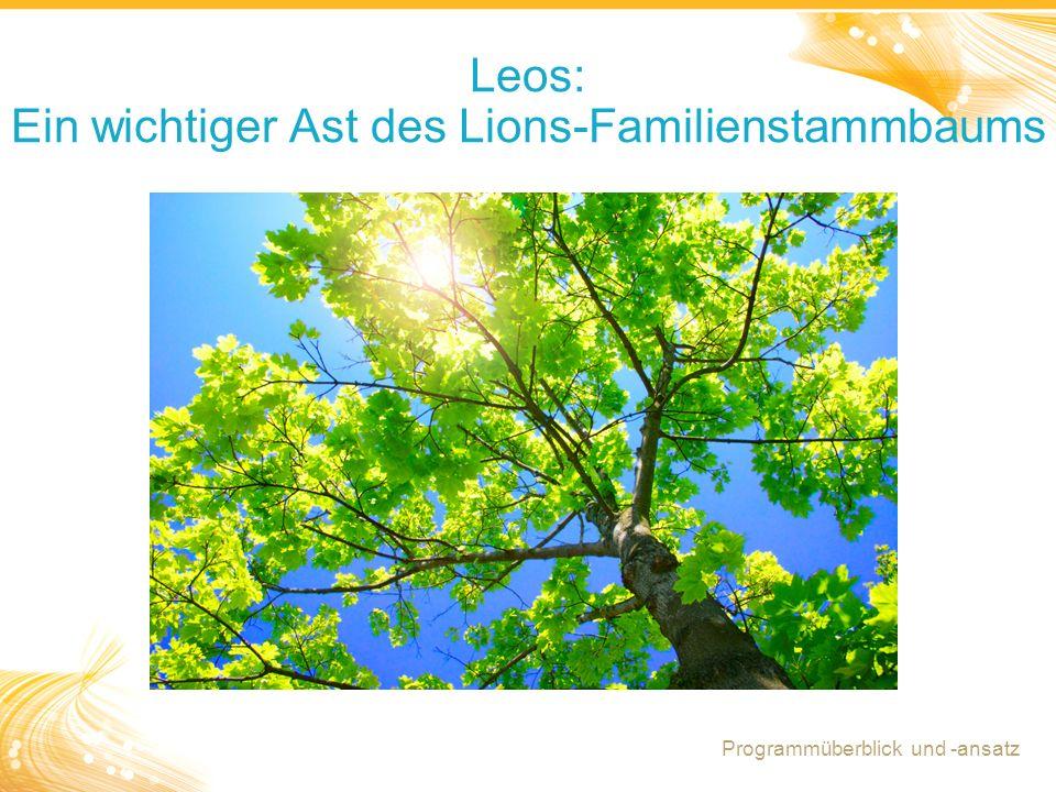 12 Leos: Ein wichtiger Ast des Lions-Familienstammbaums Programmüberblick und -ansatz