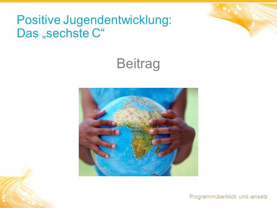 """8 Positive Jugendentwicklung: Das """"sechste C Beitrag Programmüberblick und -ansatz"""