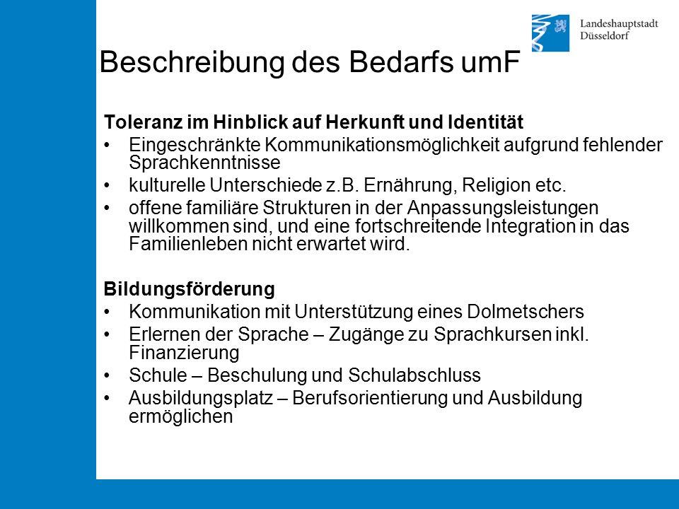 Beschreibung des Bedarfs umF Toleranz im Hinblick auf Herkunft und Identität Eingeschränkte Kommunikationsmöglichkeit aufgrund fehlender Sprachkenntni