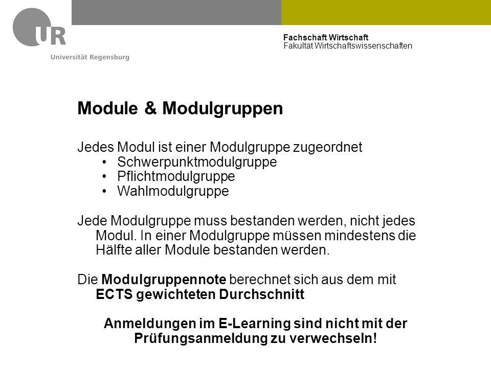 Fachschaft Wirtschaft Fakultät Wirtschaftswissenschaften Module & Modulgruppen Jedes Modul ist einer Modulgruppe zugeordnet Schwerpunktmodulgruppe Pfl