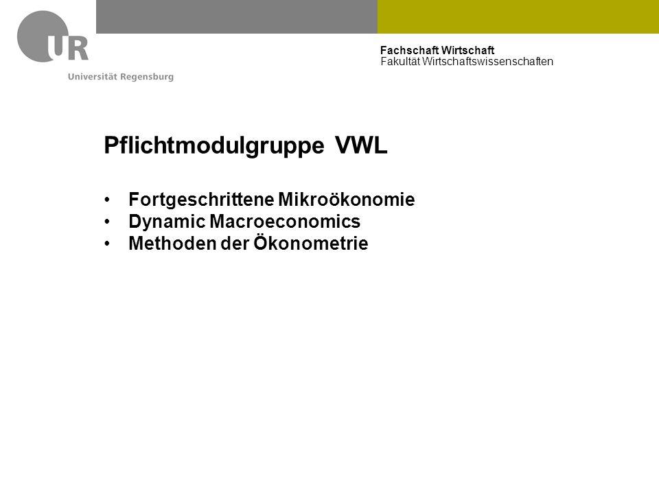 Fachschaft Wirtschaft Fakultät Wirtschaftswissenschaften Pflichtmodulgruppe VWL Fortgeschrittene Mikroökonomie Dynamic Macroeconomics Methoden der Öko