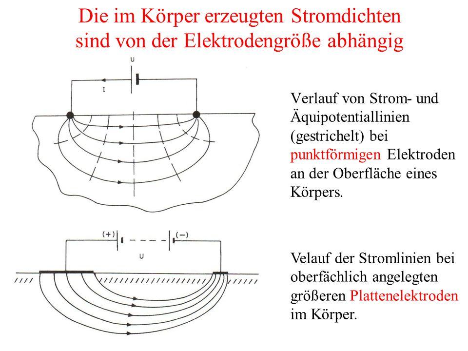 Verlauf von Strom- und Äquipotentiallinien (gestrichelt) bei punktförmigen Elektroden an der Oberfläche eines Körpers.