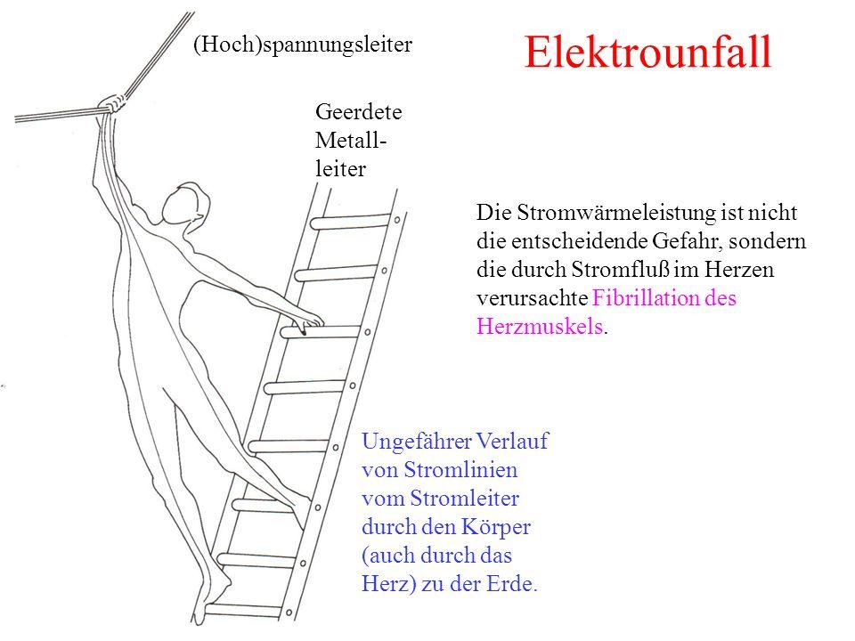 Elektrounfall Ungefährer Verlauf von Stromlinien vom Stromleiter durch den Körper (auch durch das Herz) zu der Erde.
