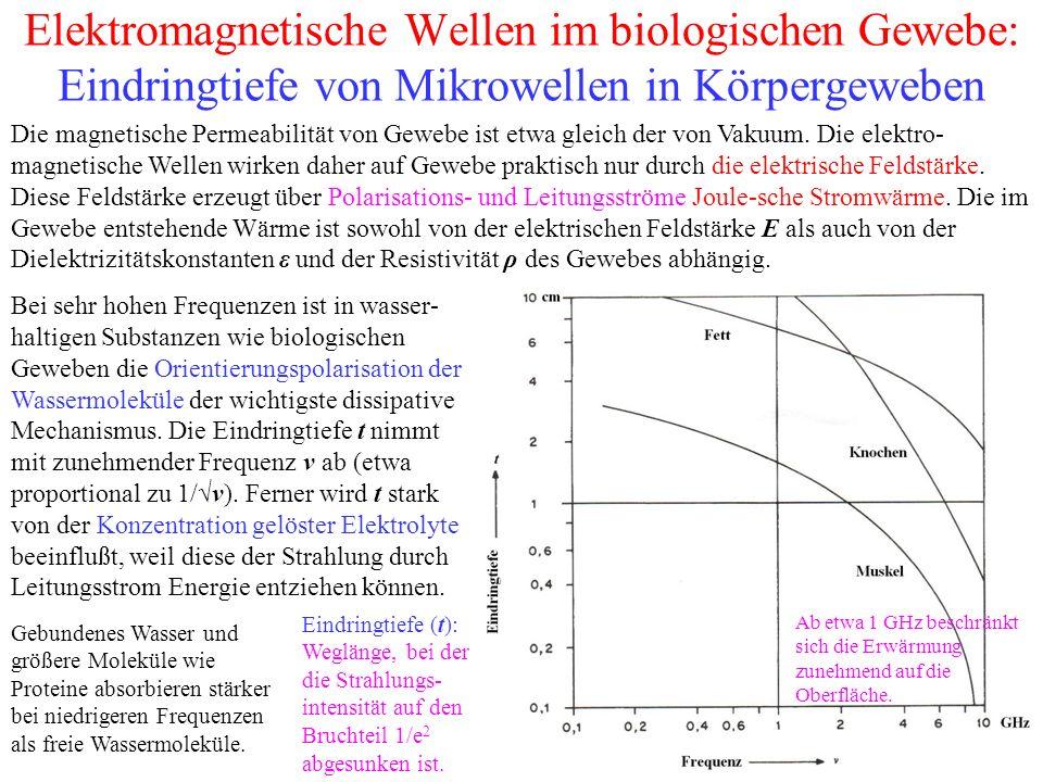 Elektromagnetische Wellen im biologischen Gewebe: Eindringtiefe von Mikrowellen in Körpergeweben Eindringtiefe (t): Weglänge, bei der die Strahlungs- intensität auf den Bruchteil 1/e 2 abgesunken ist.