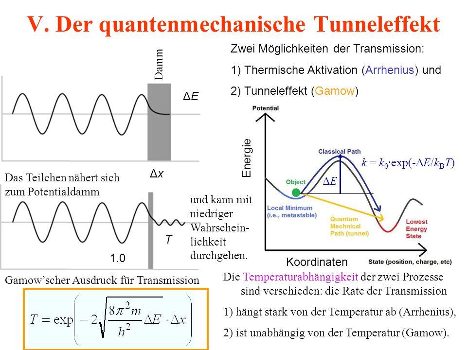 V. Der quantenmechanische Tunneleffekt ΔxΔx ΔEΔE 1.0 T Gamow'scher Ausdruck für Transmission Zwei Möglichkeiten der Transmission: 1) Thermische Aktiva