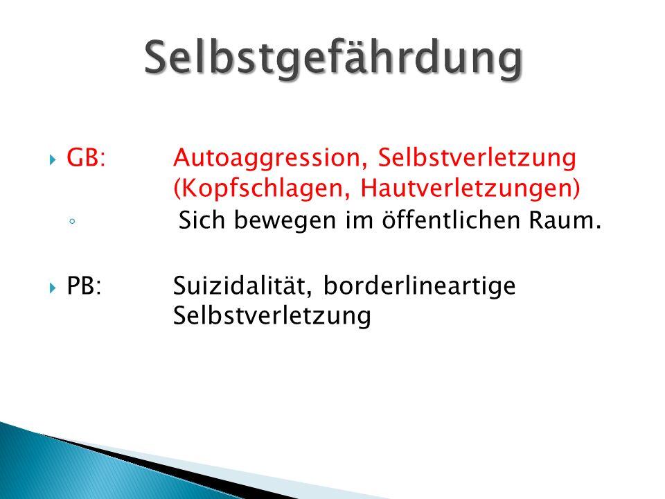 GB:Autoaggression, Selbstverletzung (Kopfschlagen, Hautverletzungen) ◦ Sich bewegen im öffentlichen Raum.  PB:Suizidalität, borderlineartige Selbst