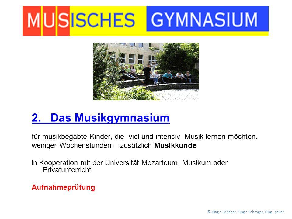 2. Das Musikgymnasium für musikbegabte Kinder, die viel und intensiv Musik lernen möchten.