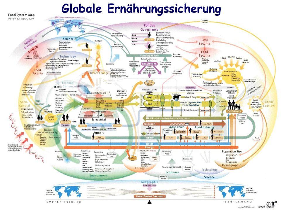 9 GLOBALE ERNÄHRUNGSSICHERUNG 9 Globale Ernährungssicherung