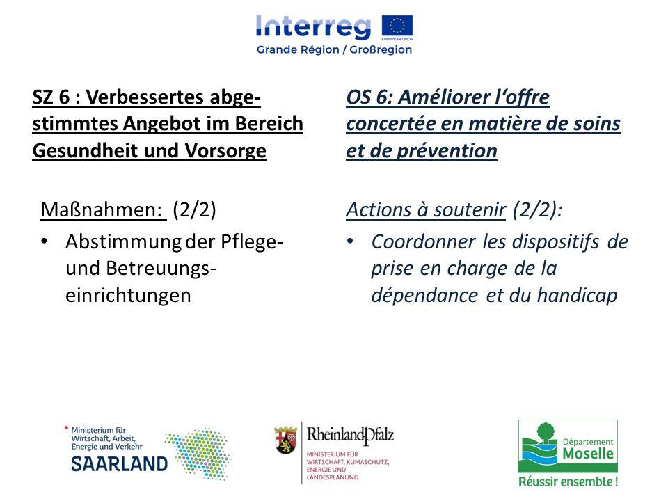 Maßnahmen: (2/2) Abstimmung der Pflege- und Betreuungs- einrichtungen Actions à soutenir (2/2): Coordonner les dispositifs de prise en charge de la dé
