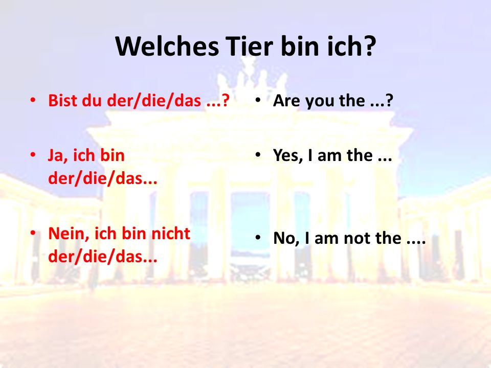 Welches Tier bin ich? Bist du der/die/das...? Ja, ich bin der/die/das... Nein, ich bin nicht der/die/das... Are you the...? Yes, I am the... No, I am