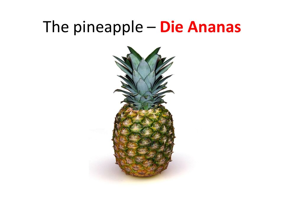 The pineapple – Die Ananas