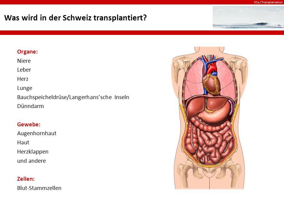 02a / Transplantation Lösung Organe: Niere Leber Herz Lunge Bauchspeicheldrüse/Langerhans'sche Inseln Dünndarm Gewebe: Augenhornhaut Haut Herzklappen und andere Zellen: Blut-Stammzellen