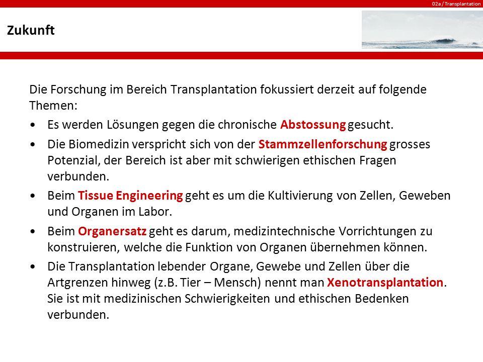 02a / Transplantation Zukunft Die Forschung im Bereich Transplantation fokussiert derzeit auf folgende Themen: Es werden Lösungen gegen die chronische