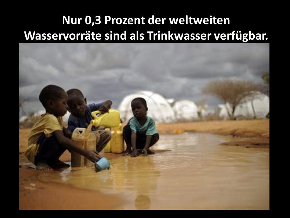 Nur 0,3 Prozent der weltweiten Wasservorräte sind als Trinkwasser verfügbar.