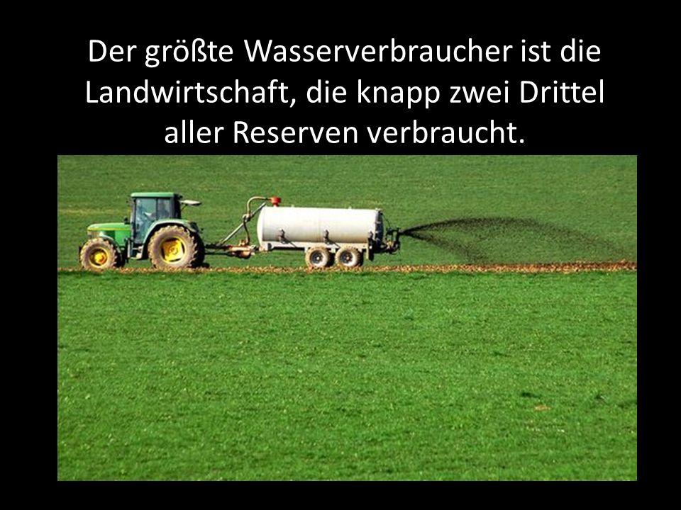 Der größte Wasserverbraucher ist die Landwirtschaft, die knapp zwei Drittel aller Reserven verbraucht.
