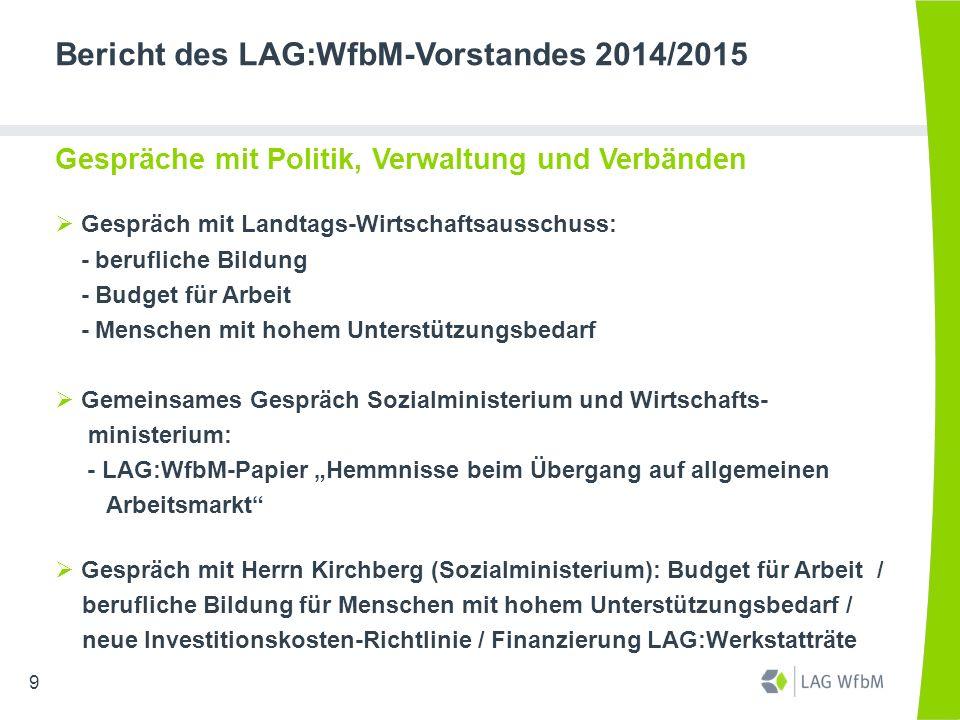 Bericht des LAG:WfbM-Vorstandes 2014/2015 Gespräche mit Politik, Verwaltung und Verbänden  Gespräch mit Landtags-Wirtschaftsausschuss: - berufliche B