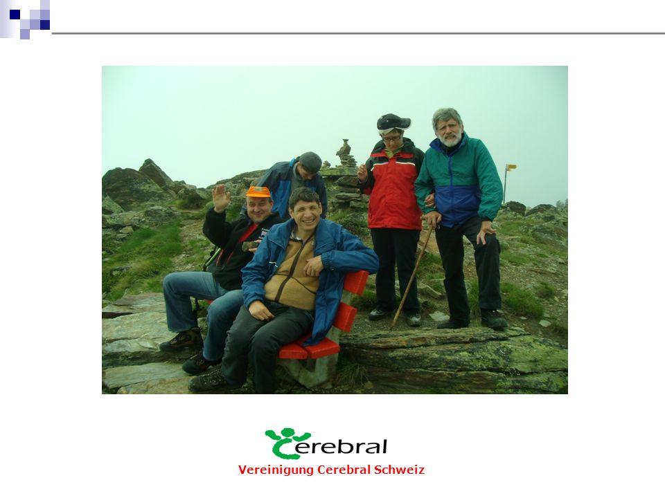 Vereinigung Cerebral Schweiz Veröffentlichungen  Herausgabe von 4 Bulletins Cerebral (3-sprachig)  Fachpublikationen  Bücher