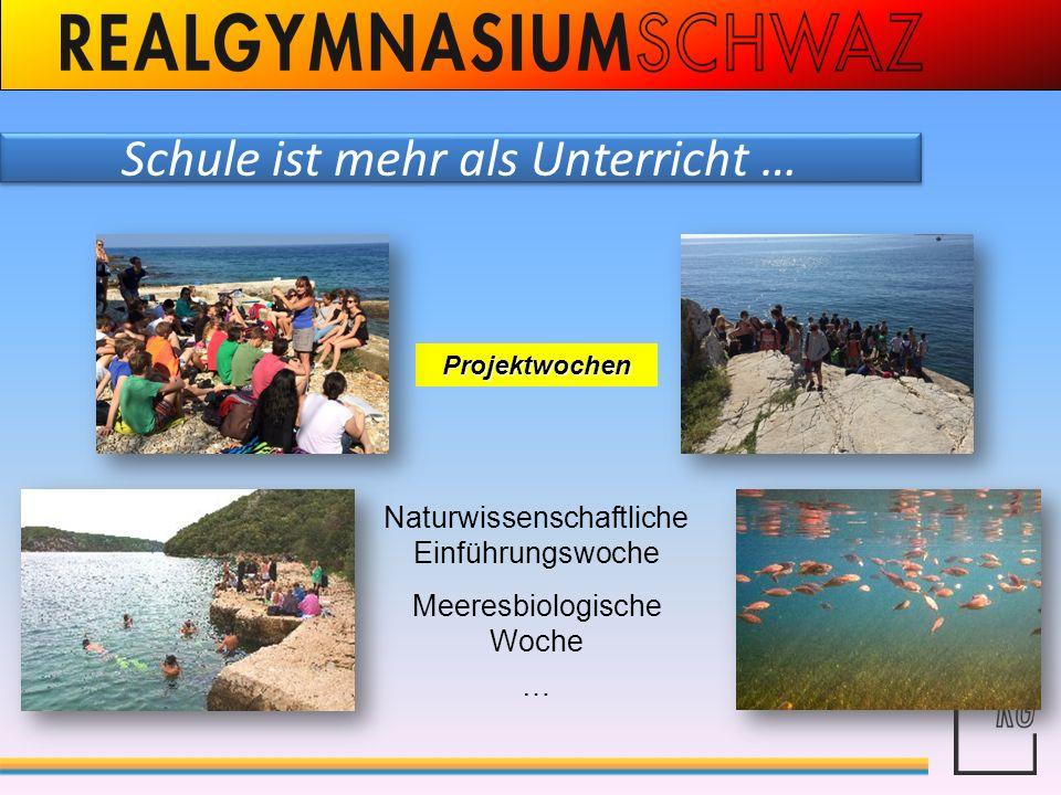 Schule ist mehr als Unterricht … Projektwochen Naturwissenschaftliche Einführungswoche Meeresbiologische Woche …