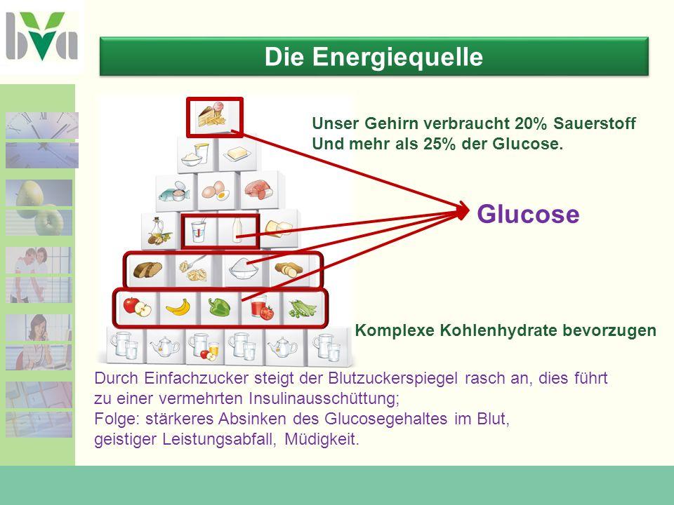 Die Energiequelle Glucose Unser Gehirn verbraucht 20% Sauerstoff Und mehr als 25% der Glucose.