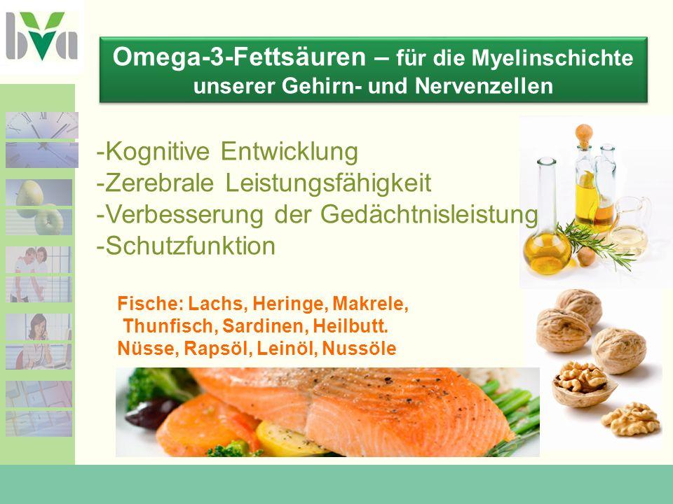 Omega-3-Fettsäuren – für die Myelinschichte unserer Gehirn- und Nervenzellen -Kognitive Entwicklung -Zerebrale Leistungsfähigkeit -Verbesserung der Gedächtnisleistung -Schutzfunktion Fische: Lachs, Heringe, Makrele, Thunfisch, Sardinen, Heilbutt.