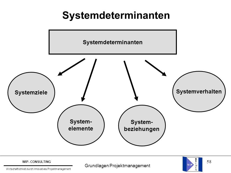 58 Systemdeterminanten Systemziele System- elemente System- beziehungen Systemverhalten Grundlagen Projektmanagement WIP- CONSULTING Wirtschaftlichkei