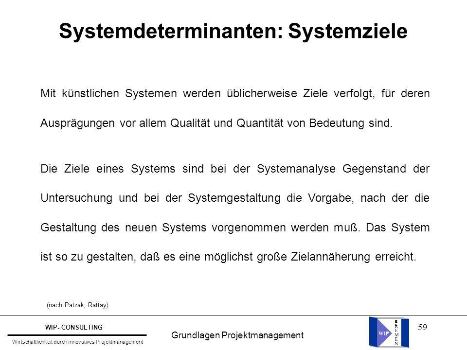 59 Systemdeterminanten: Systemziele Mit künstlichen Systemen werden üblicherweise Ziele verfolgt, für deren Ausprägungen vor allem Qualität und Quanti