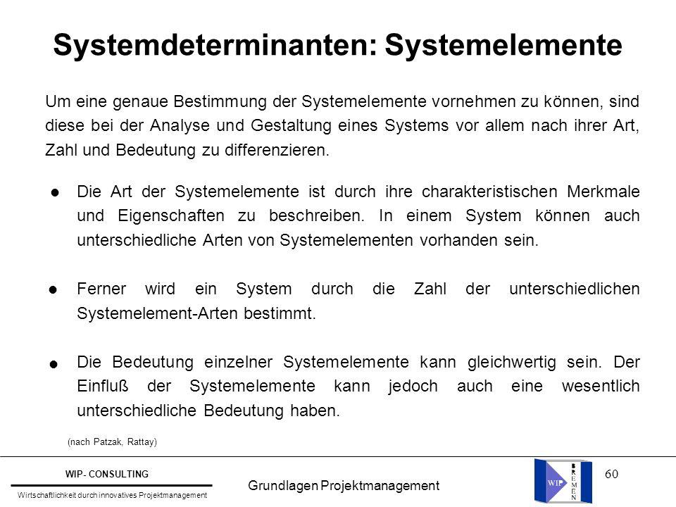 60 Systemdeterminanten: Systemelemente Um eine genaue Bestimmung der Systemelemente vornehmen zu können, sind diese bei der Analyse und Gestaltung ein