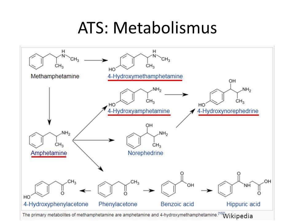 ATS: Metabolismus Wikipedia
