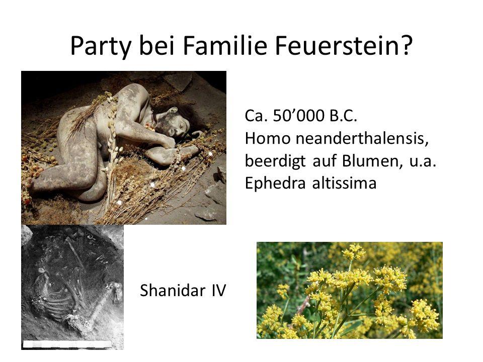 Party bei Familie Feuerstein.Shanidar IV Ca. 50'000 B.C.