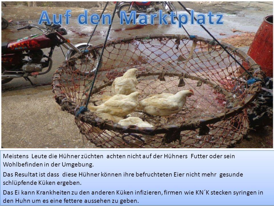Hühner werden jetzt geköpft und ihre Federn werden raus gezuckt, nach das wird ihre Haut geschält bis der Fleischabdeckung.
