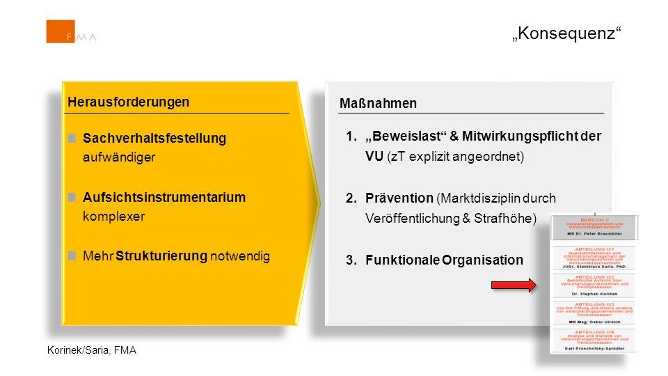 """19 Herausforderungen Sachverhaltsfestellung aufwändiger Aufsichtsinstrumentarium komplexer Mehr Strukturierung notwendig Maßnahmen 1.""""Beweislast"""" & Mi"""