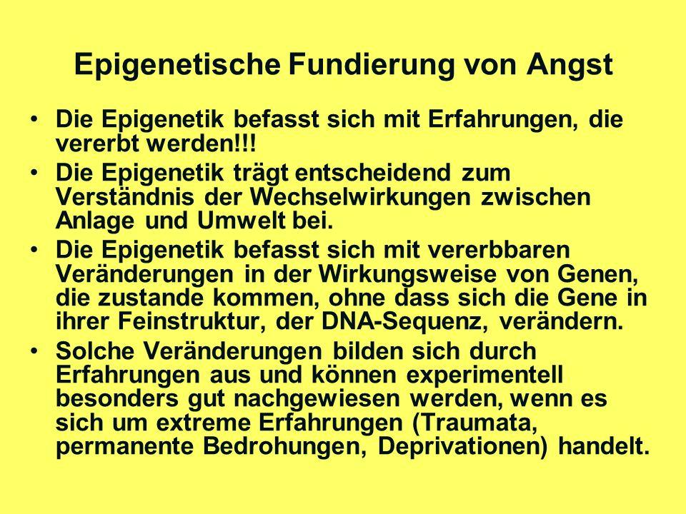 Epigenetische Fundierung von Angst (2) Solche Erfahrungen bringen in den Zellen (nicht im Zellkern!) biochemische Prozesse in Gang, welche die Wirksamkeit bestimmter Gen-Orte in der DNA-Sequenz (im Zellkern!) blockieren (methylieren) oder freisetzen (demethylieren).