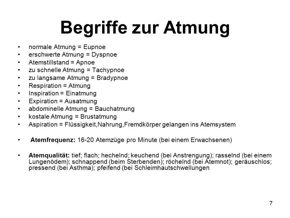 7 Begriffe zur Atmung normale Atmung = Eupnoe erschwerte Atmung = Dyspnoe Atemstillstand = Apnoe zu schnelle Atmung = Tachypnoe zu langsame Atmung = B