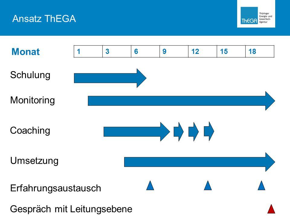 1369121518 Schulung Monitoring Coaching Umsetzung Monat Erfahrungsaustausch Gespräch mit Leitungsebene Ansatz ThEGA