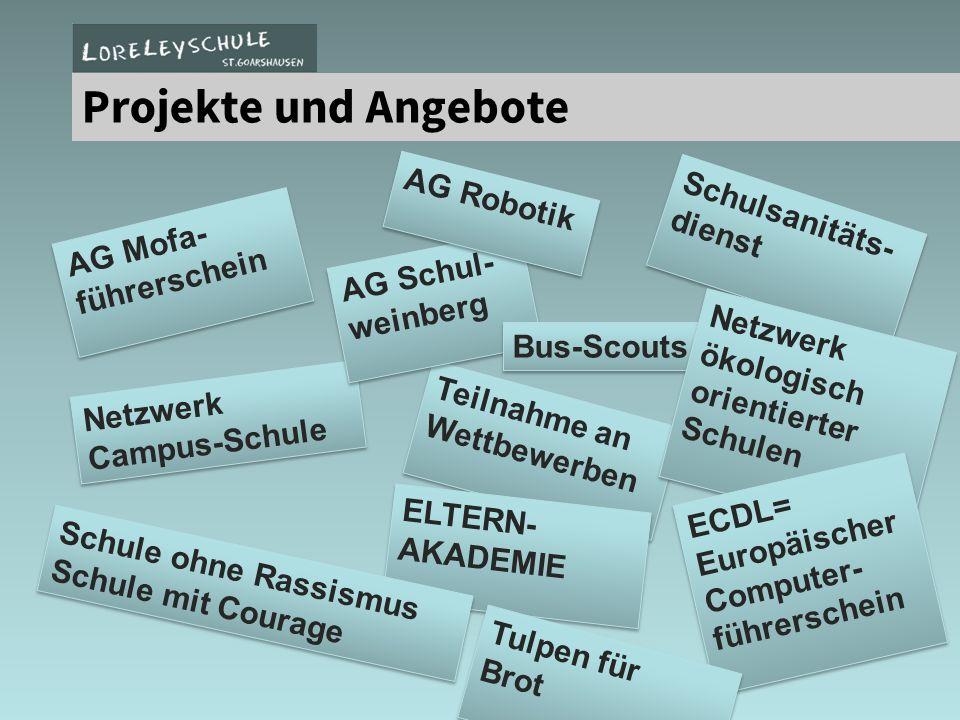 Projekte und Angebote Schulsanitäts- dienst Schulsanitäts- dienst Netzwerk Campus-Schule Teilnahme an Wettbewerben AG Schul- weinberg AG Robotik AG Mo
