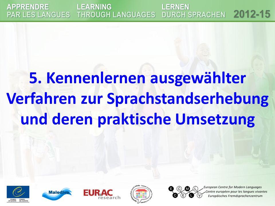 5. Kennenlernen ausgewählter Verfahren zur Sprachstandserhebung und deren praktische Umsetzung