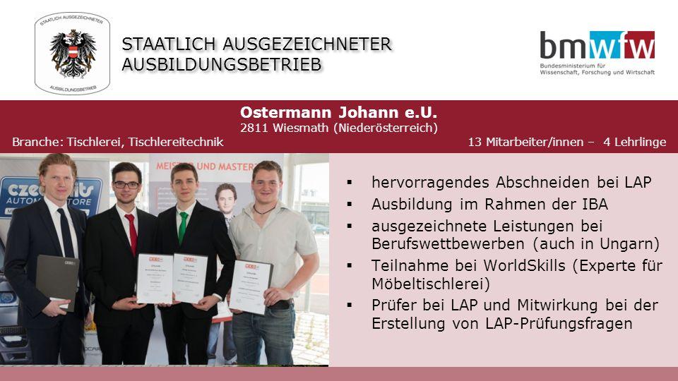  hervorragendes Abschneiden bei LAP  Ausbildung im Rahmen der IBA  ausgezeichnete Leistungen bei Berufswettbewerben (auch in Ungarn)  Teilnahme be