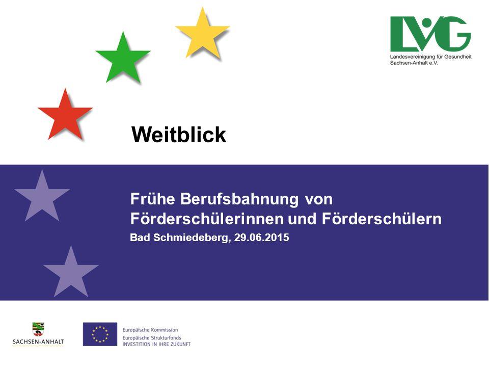 Weitblick Frühe Berufsbahnung von Förderschülerinnen und Förderschülern Bad Schmiedeberg, 29.06.2015