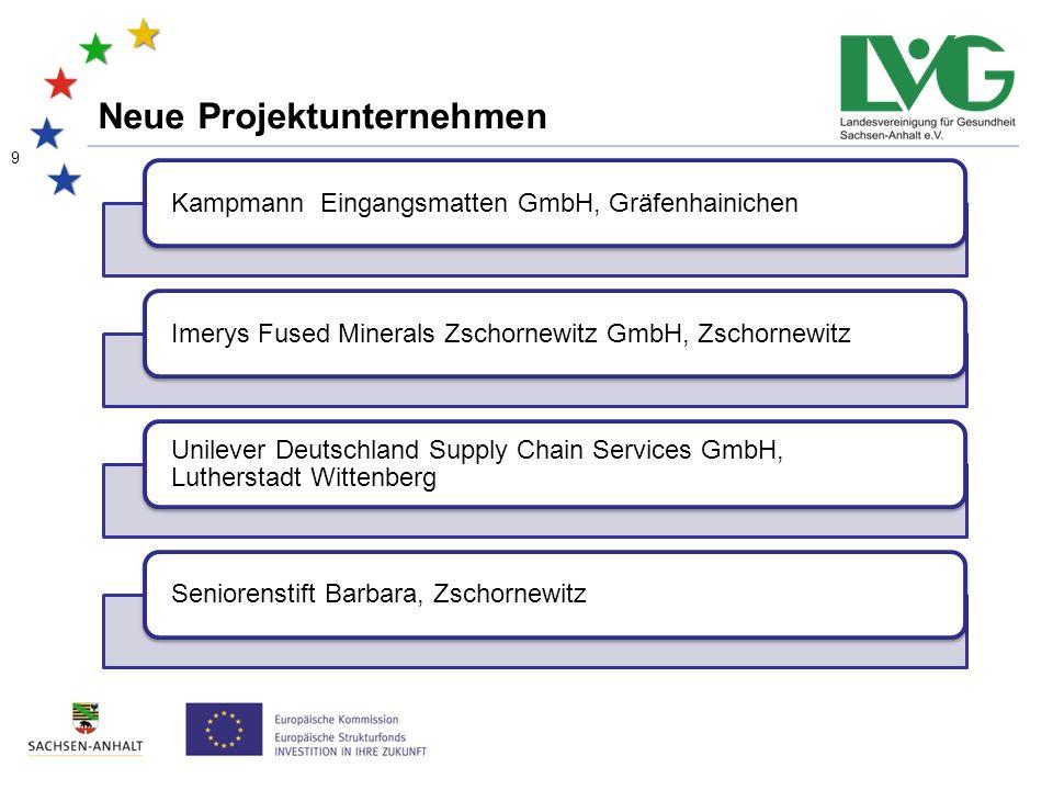 30 Daten und Fakten 2010 - 2013 11 Weitblick -Schulabgänger/-innen
