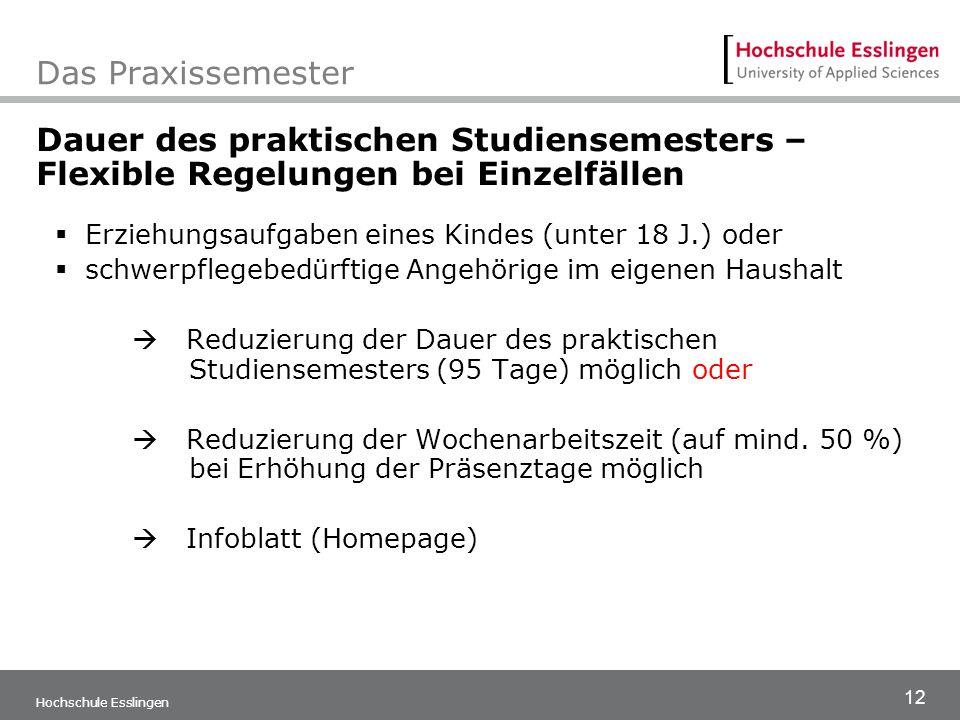 12 Hochschule Esslingen Das Praxissemester Dauer des praktischen Studiensemesters – Flexible Regelungen bei Einzelfällen  Erziehungsaufgaben eines Ki