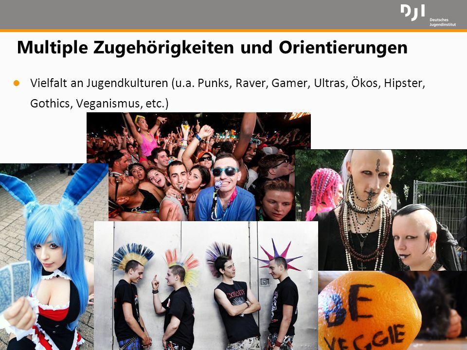 16 Multiple Zugehörigkeiten und Orientierungen l Vielfalt an Jugendkulturen (u.a. Punks, Raver, Gamer, Ultras, Ökos, Hipster, Gothics, Veganismus, etc