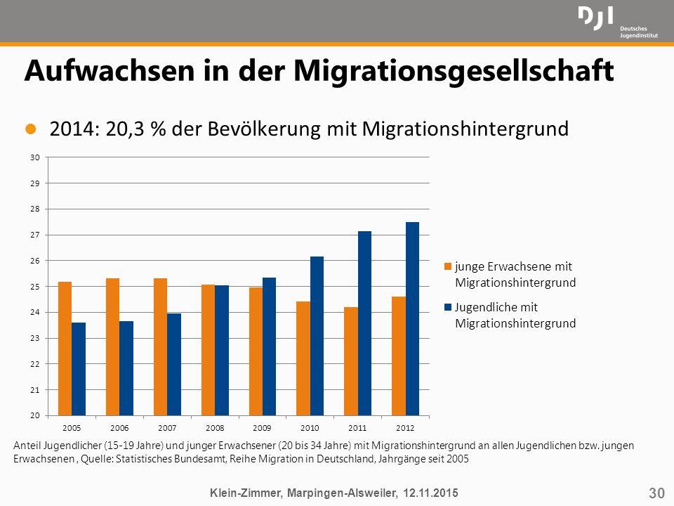 30 Aufwachsen in der Migrationsgesellschaft l 2014: 20,3 % der Bevölkerung mit Migrationshintergrund Klein-Zimmer, Marpingen-Alsweiler, 12.11.2015 Ant