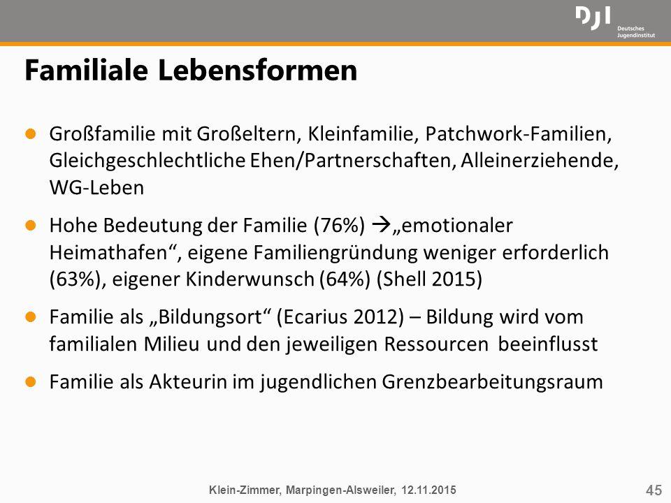 45 Familiale Lebensformen l Großfamilie mit Großeltern, Kleinfamilie, Patchwork-Familien, Gleichgeschlechtliche Ehen/Partnerschaften, Alleinerziehende