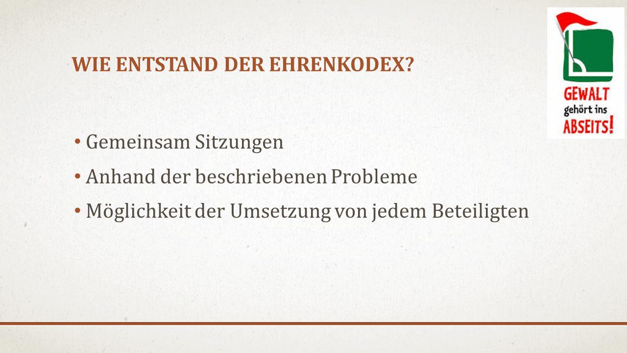 WIE ENTSTAND DER EHRENKODEX? Gemeinsam Sitzungen Anhand der beschriebenen Probleme Möglichkeit der Umsetzung von jedem Beteiligten