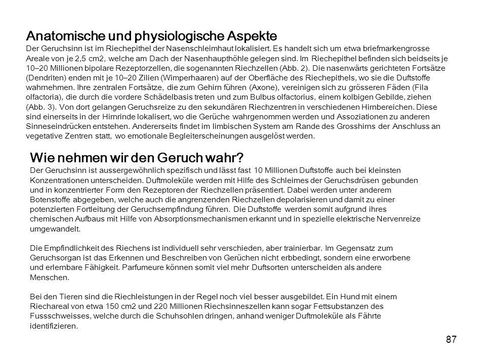 87 Anatomische und physiologische Aspekte Der Geruchsinn ist im Riechepithel der Nasenschleimhaut lokalisiert.