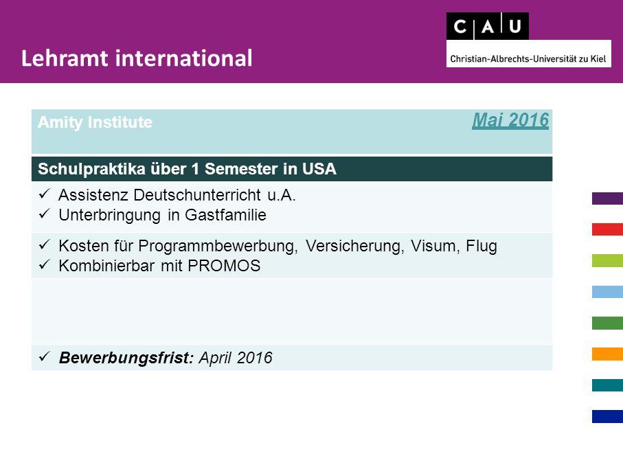 Amity Institute Schulpraktika über 1 Semester in USA Assistenz Deutschunterricht u.A. Unterbringung in Gastfamilie Kosten für Programmbewerbung, Versi